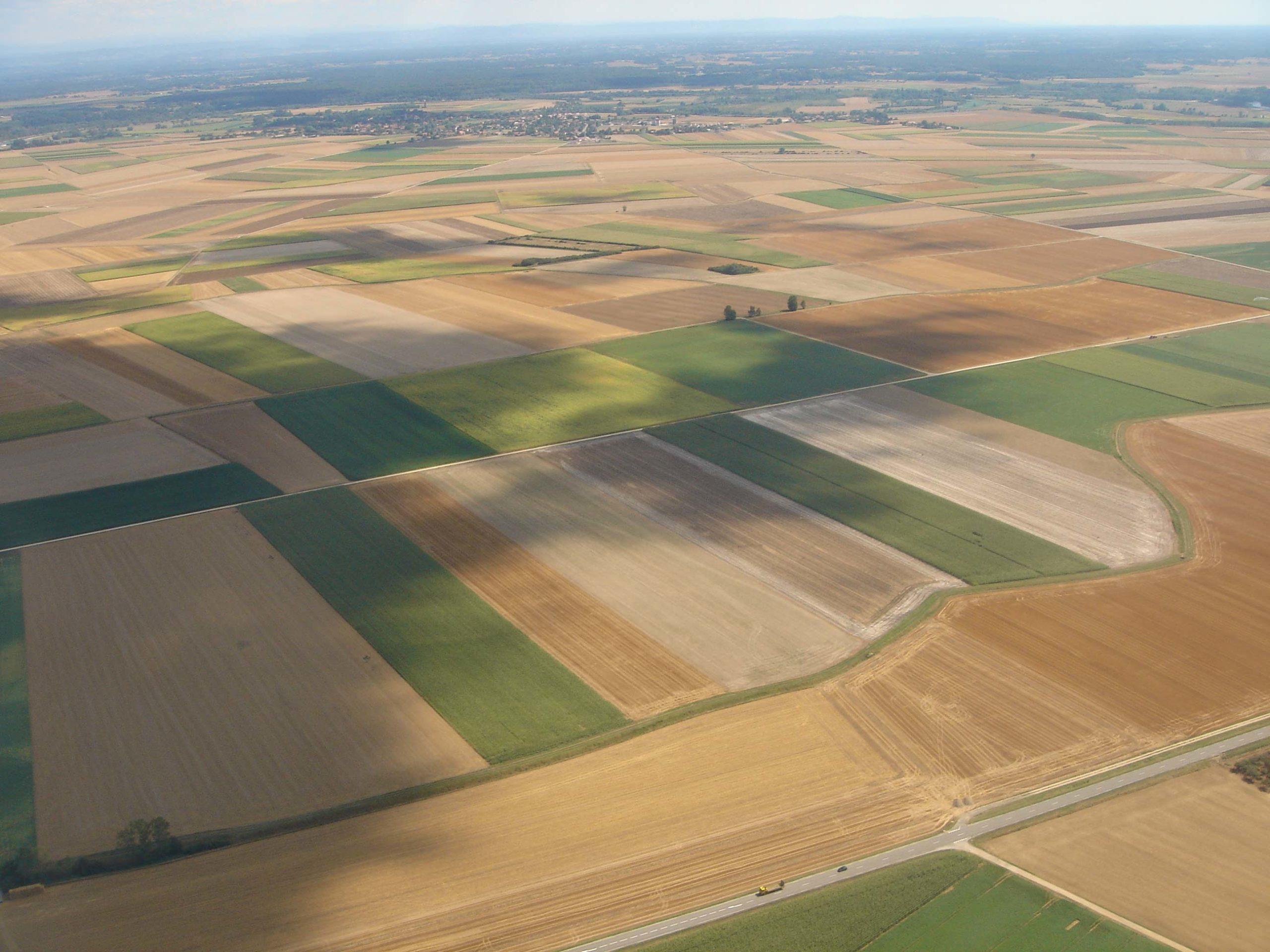 biodiversite agriculture