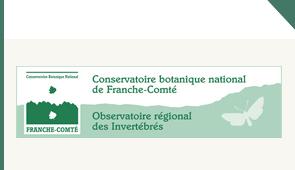 logo CBNFCORI