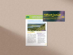 nature junior BFC
