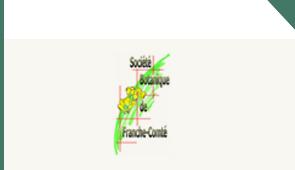 logo SBFC