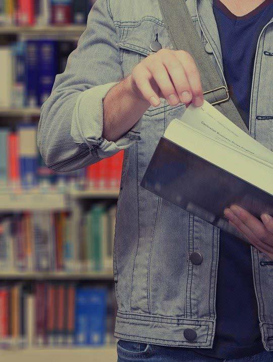 bibliotheque universite