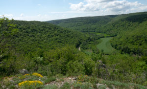 La réserve naturelle régionale du Val-Suzon